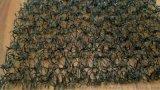 福建泉州柔性水土保護毯 7220水土保護毯