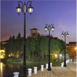 四川中晨景观灯户外 庭院景观灯 道路景观灯