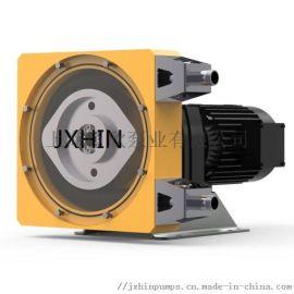 蠕动软管泵 蠕动泵 计量泵 jx10