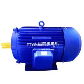 高效永磁电机 FTY750-4/0.75KW
