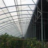 金坤日光溫室設計 日光溫室大棚建造
