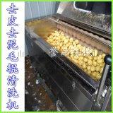 直銷毛輥清洗機-土豆芋頭去皮清洗機-豆去皮機