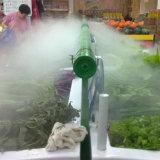 蔬菜保鲜加湿机 蔬菜不干枯新鲜有保证
