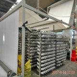 编织布240克-50kN/m生产厂家