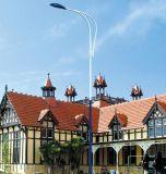 臂4米6米廣場高杆路燈 路燈定製太陽能路燈