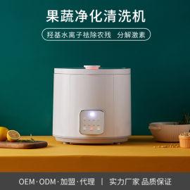 STY06E超声波果蔬清洗机OEM 食材净化机厂家