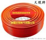 BGK05-375V6水工觀測電纜/安徽天纜電氣