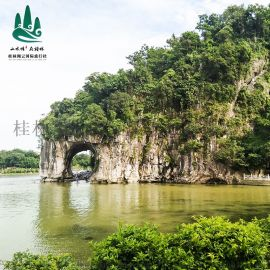 桂林旅游攻略必玩的景点