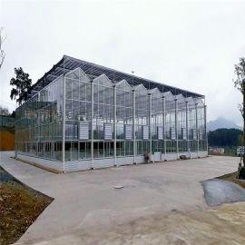 智能温室玻璃大棚 智能纹络型温室