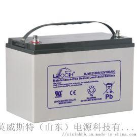 理士EPS蓄电池 免维护铅酸蓄电池100Ah