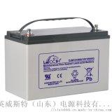 理士EPS蓄電池 免維護鉛酸蓄電池100Ah