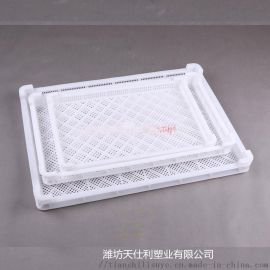 供应塑料单冻盘 塑料网盘厂家 冷库用速冻器