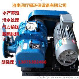 鱼塘养殖用三叶罗茨鼓风机,特殊气体罗茨增压泵,