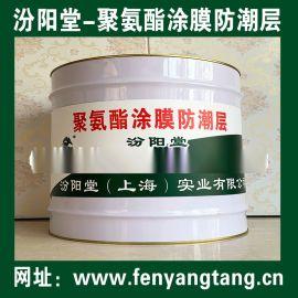 聚氨酯涂膜防潮层、防水,防腐,防潮,防漏,性能好