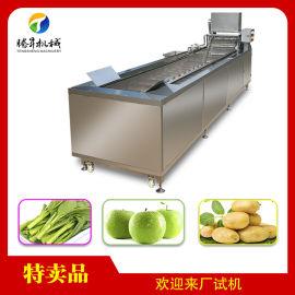 瓜果蔬菜、根茎类农作物清洗机 大小型气泡式洗菜机 酱菜生产线