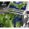 玉米清洗機 多功能食品清洗設備 高效快速