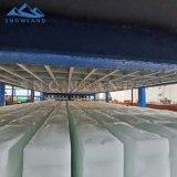 30吨50kg工业条冰机海鲜蔬菜运输块冰制冰机