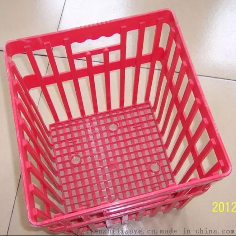**塑料种蛋筐 种蛋运输筐 孵化器用塑料蛋筐