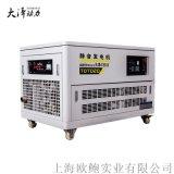 大泽动力30KW汽油发电机功率广