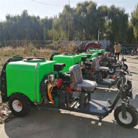 陕西小型果树打药机厂家,多功能自走式三轮车打药机