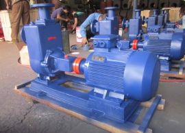 水泵厂家40ZW20-15无堵塞自吸式排污泵/自吸杂质泵/自吸污水泵/自吸污泥泵