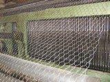 六角网 镀锌六角网PVC六角网 拧花六角网