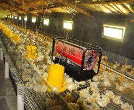 永备厂家供应大连养殖柴油热风机,鸡舍育雏供暖热风炉