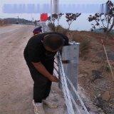 绳索护栏@绳索护栏厂家@公路绳索防撞护栏