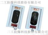 中海油防爆红外激光探测器