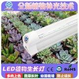 偉照業廠家直銷led植物生長燈紅藍光組合蔬菜花卉補光助長燈批發