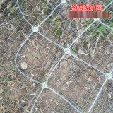热镀锌钢丝GPS2型钢丝绳国标主动防护网厂家报价