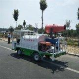 新能源電動灑水車廠家 小型電動四輪綠化灑水車