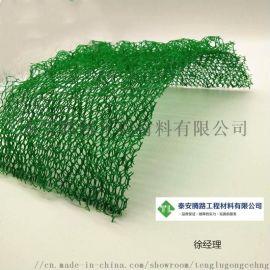 厂家定制生产EM2植草绿化边坡防护三维植被网