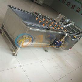 水芹菜清洗机 山芹喷淋式清洗机 连续式洗菜机