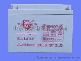 力源蓄电池LY12240/12V24AH铅酸免维护UPS直流屏蓄电池量足包邮特价