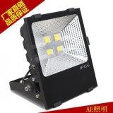 AE照明出口欧美LED投光灯100w200w