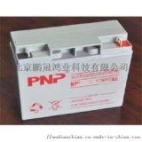 PNP蓄电池NP17-12 12V17AH