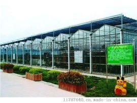 西安生态餐厅、生态温室酒店建设