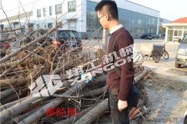 工厂常年大量供应园林修枝剪