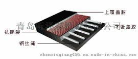 化肥厂耐酸碱斗式提升机钢丝皮带输送带性能稳定