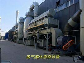 自主开发技术有机废气催化燃烧设备