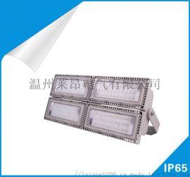 NTC9280-L450投光LED灯