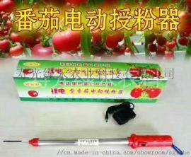 **电池型番茄电动授粉器番茄授粉震动器点花机器