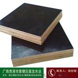 广西模板价格桉木板行情信息