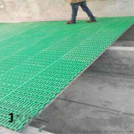 新型塑料羊床 羊床塑料漏粪板 防滑羊漏粪板