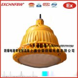 專業生產22W EGD系列防爆隔爆燈LED