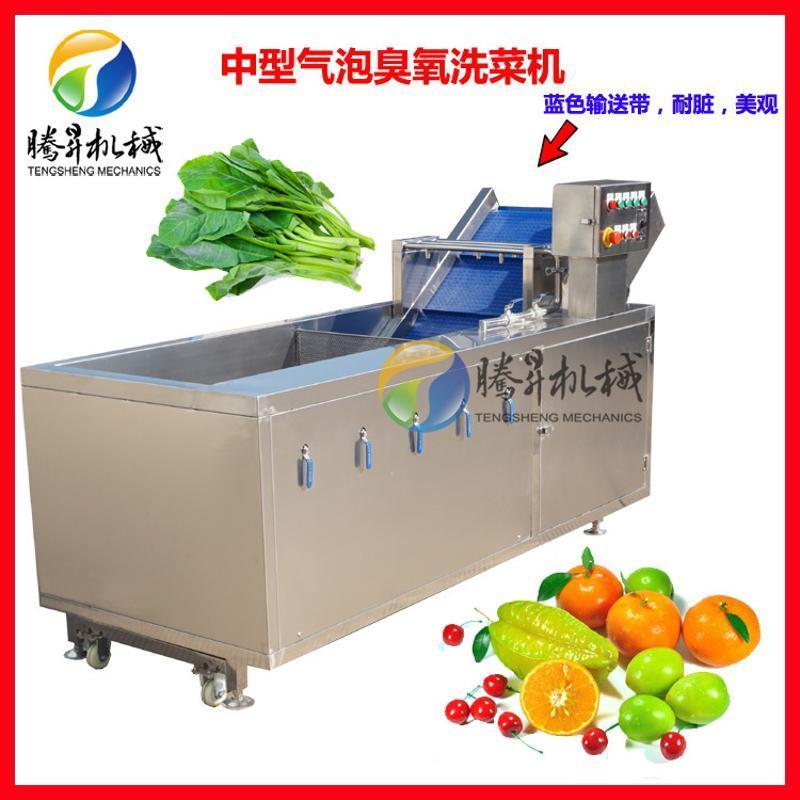 自动化气泡喷淋清洗机  臭氧消毒洗菜机