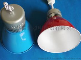 贴片式LED生鲜灯低热量果蔬超市20w生鲜灯中山厂家