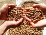 厂家直销定制价格新型无烟受热均匀生物质颗粒