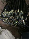 BNG-DN25*700防爆撓性軟管